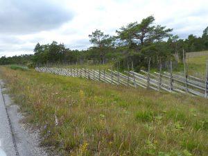 bis Gotland 087